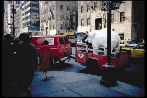 garry-winogrand-color-fotografia-09