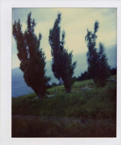 robert-frank-polaroid-06