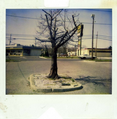 robert-frank-polaroid-09