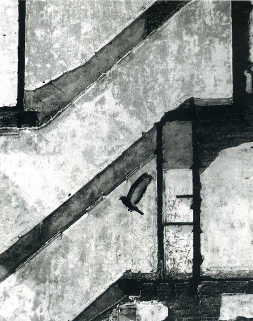 Andre-Kertesz-05